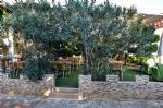 Restoranımız ve Bahçe