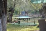 Bahçemizde Masa Tenisi