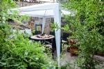 Pansiyonumuzun Bahçesi